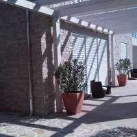 Dizajn biljaka na terasi